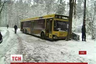 У Пущі-Водиці автобус врізався в дерево - травми отримали чотири жінки