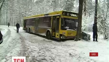 Четверо пассажиров пострадали в столичной Пуще-Водице, когда автобус врезался в дерево