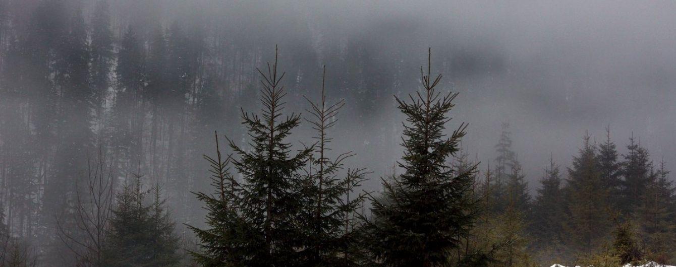 На Закарпатті знайшли туриста, який заблукав через густий туман