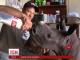 Активісти у Південній Африці врятували маленького носорога, що відбився від родини