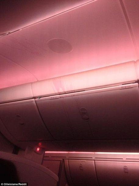 Вино на стелі та розкидані на підлозі салати: літак потрапив в зону турбулентності під час обіду