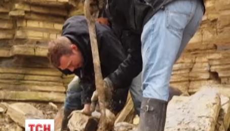 На севере Великобритании нашли останки старейшего в мире динозавра
