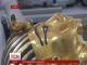 Музейні працівники в Єгипті притягнуті до суду через бороду фараона