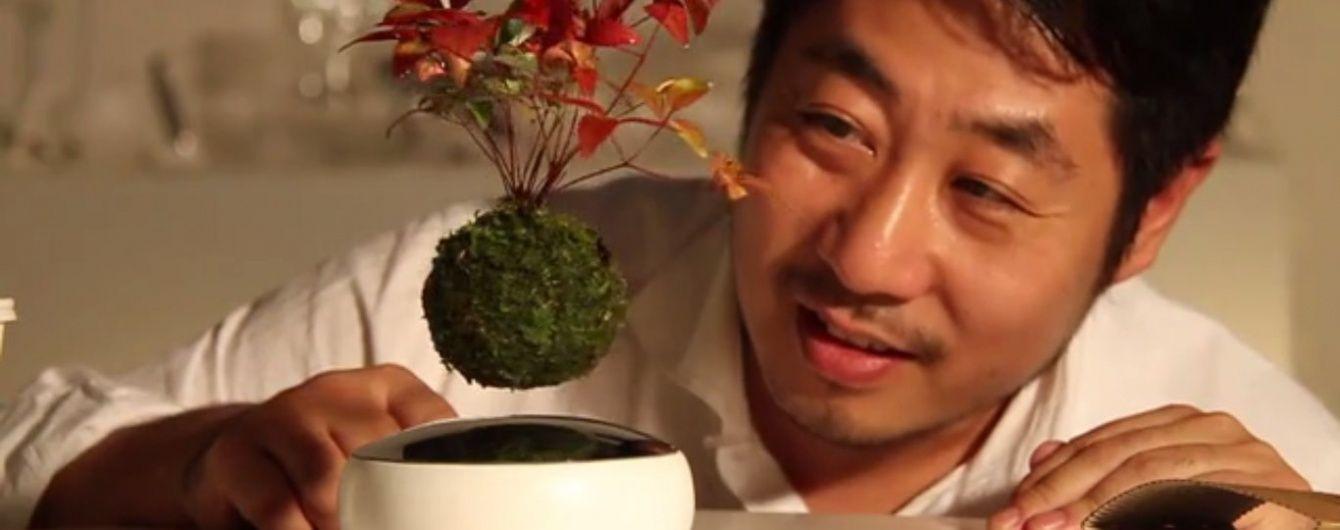 Японські винахідники змусили дерева літати