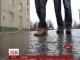 Дощі й тумани йдуть до України на зміну снігу