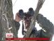 За добу у штабі АТО нарахували 40 обстрілів