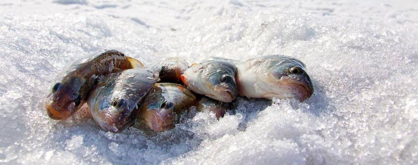 """В Украине будут """"шпионить"""" за рыбаками на водоемах"""