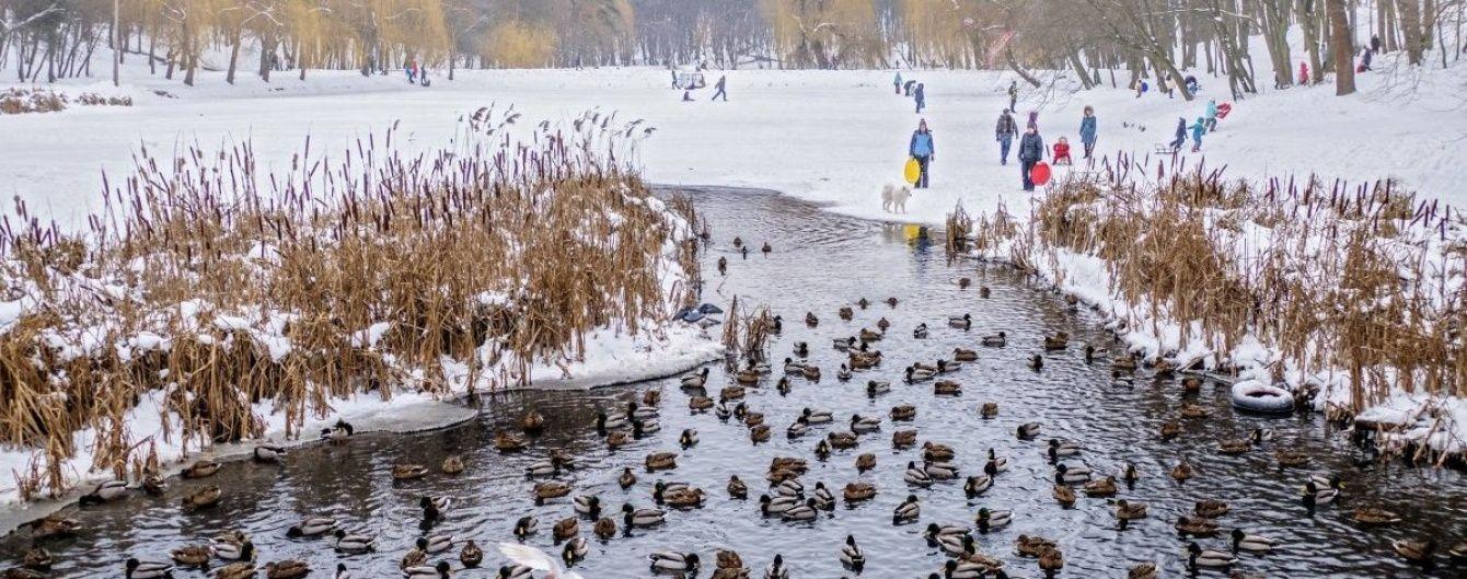 В Україні буде без опадів та плюсова температура. Прогноз погоди на 30 січня