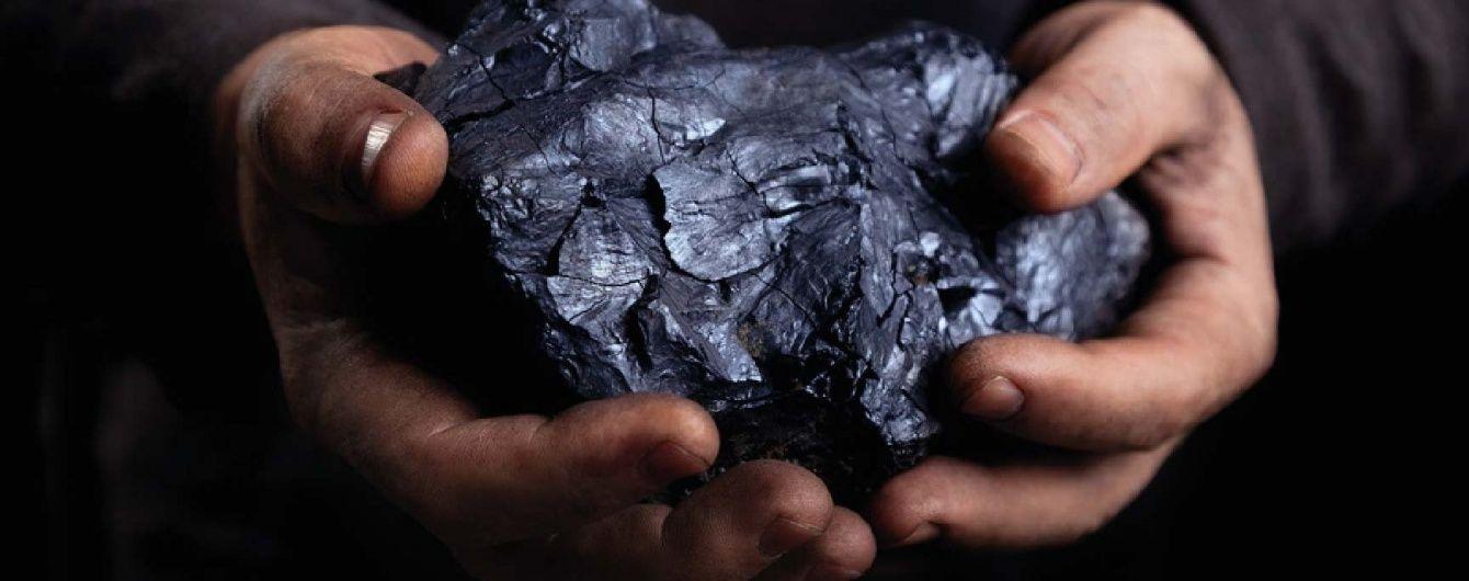 """""""Своє дівати нема куди"""": Насалик заявив, що Україна не закуповуватиме вугілля у РФ"""