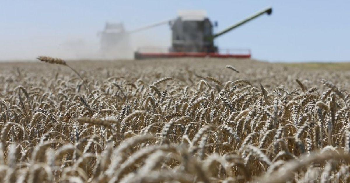 Павленко спрогнозировал, превысит ли урожай рекордные показатели прошлого года