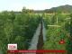 У Чилі відкрили найбільшу в світі ферму марихуани