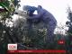 Сирійська опозиція виклала відео спецоперації зі знищення російських генералів