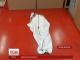 Британські студенти-дизайнери розробили плащ-трансформер