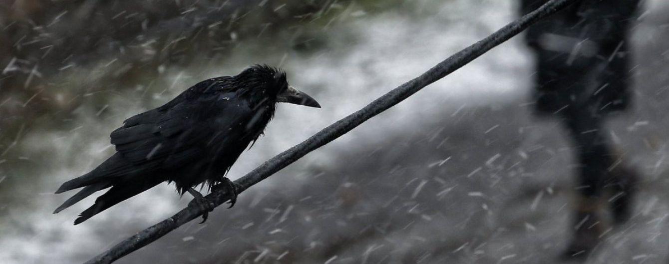 У неділю в Україні дощитиме й піде мокрий сніг