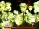 У Гонконзі на честь Дня святого Валентина запалили 25 тисяч ліхтариків-троянд