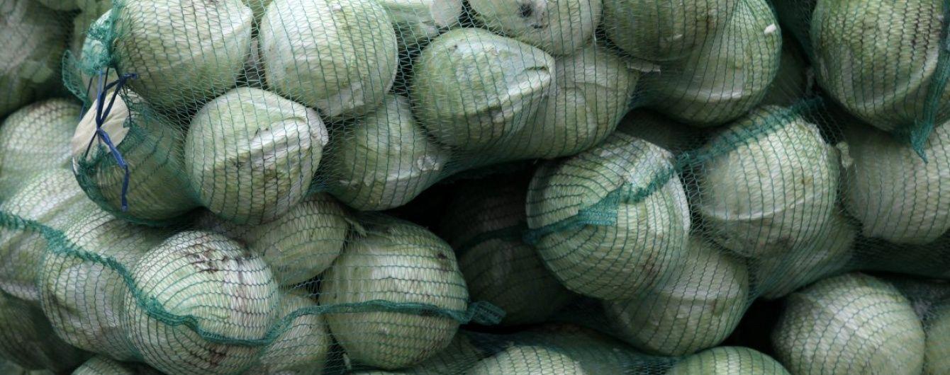Украина запретила ввоз опасных овощей из Испании