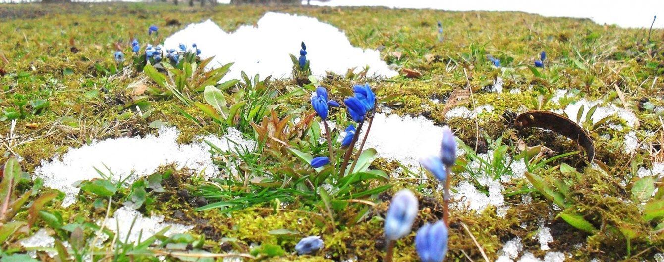 На Півдні та Заході йтиме мокрий сніг, а в Полтаві вже розквітли проліски