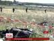 Бук-М1, з якого було збито МН-17, надала російська 53 зенітно-ракетна бригада