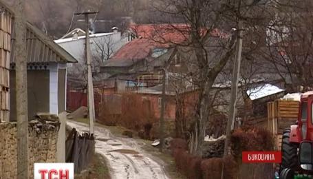 Жители несколько сел на Буковине страдают от нашествия бешеных лис