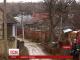 Мешканці кількові сіл на Буковині потерпають від нашестя скажених лисиць