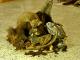 Убивство заради мистецтва: росіянин виставив опудала тварин, що здійснюють статевий акт