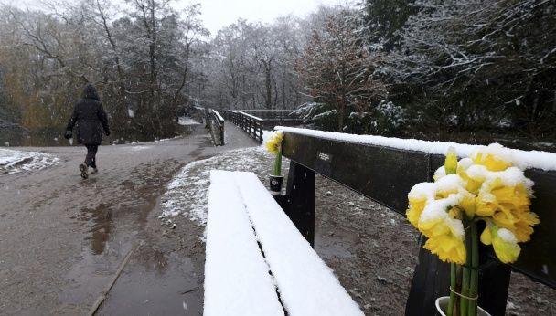 Березневий сніг. Як Британія потерпає від примхливої погоди