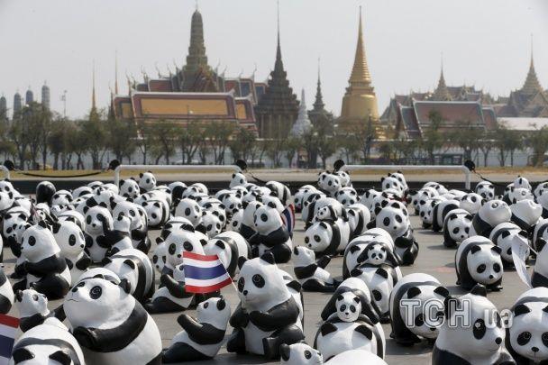 Видовищна подія: у Бангкоку скульптор просто неба виставив 1600 унікальних панд