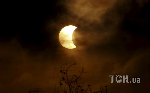 Найяскравіші фото дня: повне сонячне затемнення, полярне ведмежа у Бремені