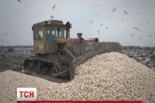 """У Росії розчавили 18 тонн """"санкційних"""" грибів із Польщі"""