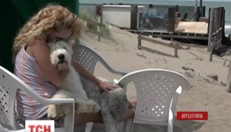 В Аргентине открыли пляж для собак