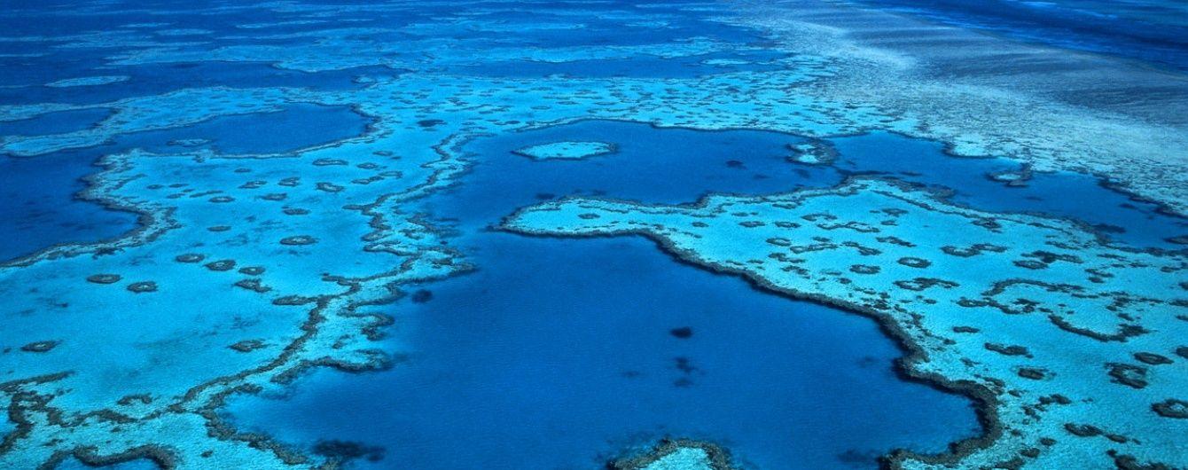 Великий бар'єрний риф отримав найвищий рівень небезпеки