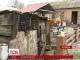 На Харківщині 17 людей, що вживали м'ясо хворої на сибірку свині, під наглядом лікарів