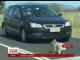 Коала спричинила транспортний хаос в австралійському місті Брисбен
