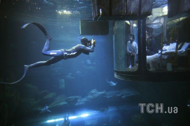 Найяскравіші фото дня: кімната-акваріум у Парижі, врятований величезний пітон у Камбоджі
