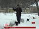У Калузькій області Росії влаштували хресну ходу котів