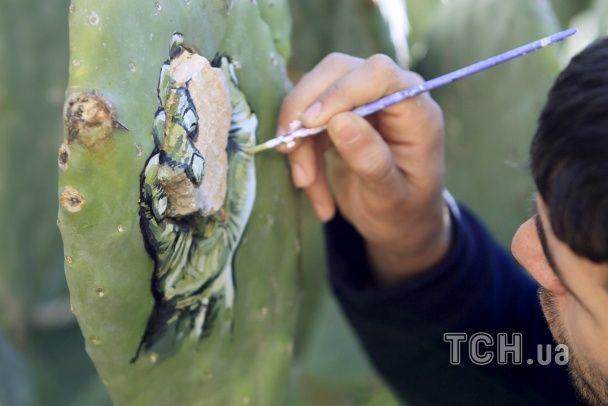 Колюче мистецтво: палестинський художник пише картини на кактусах