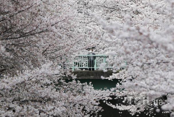 Найяскравіші фото дня: веселий Порошенко з Обамою, цвітіння вишень у Токіо