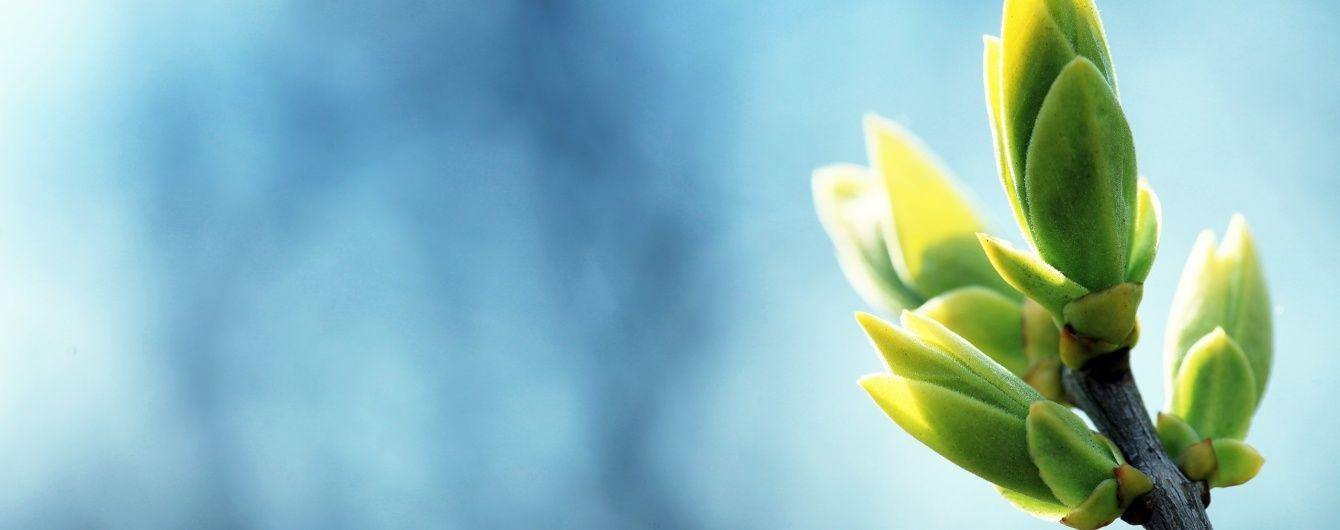 Правда про Благовіщення: непорочне зачаття і золотий дощ