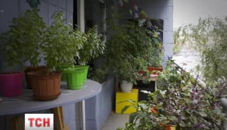 Киевлянин рассказал, как выращивает овощи и зелень в однокомнатной квартире