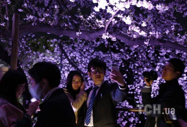 Reuters опублікувало видовищні фото цвітіння сакури у нічному Токіо