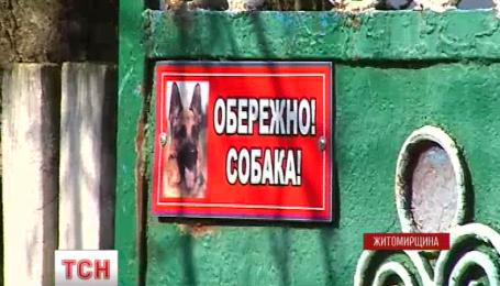 На Житомирщине кавказская овчарка насмерть загрызла полуторагодовалую девочку