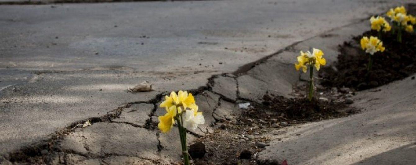 Клумби замість ям. У Чернівцях борються з вибоїнами на дорогах квітами
