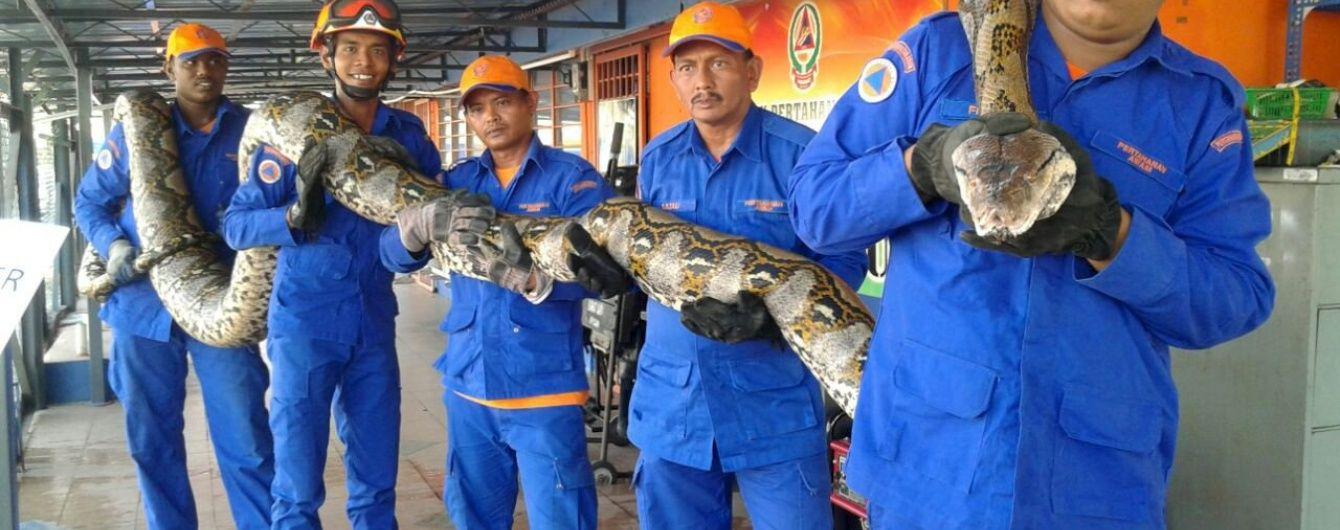 В Малайзії матч з гольфу перервав велетенський пітон