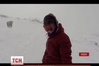 Відео погоні ведмедя за сноубордисткою стало хітом інтернету