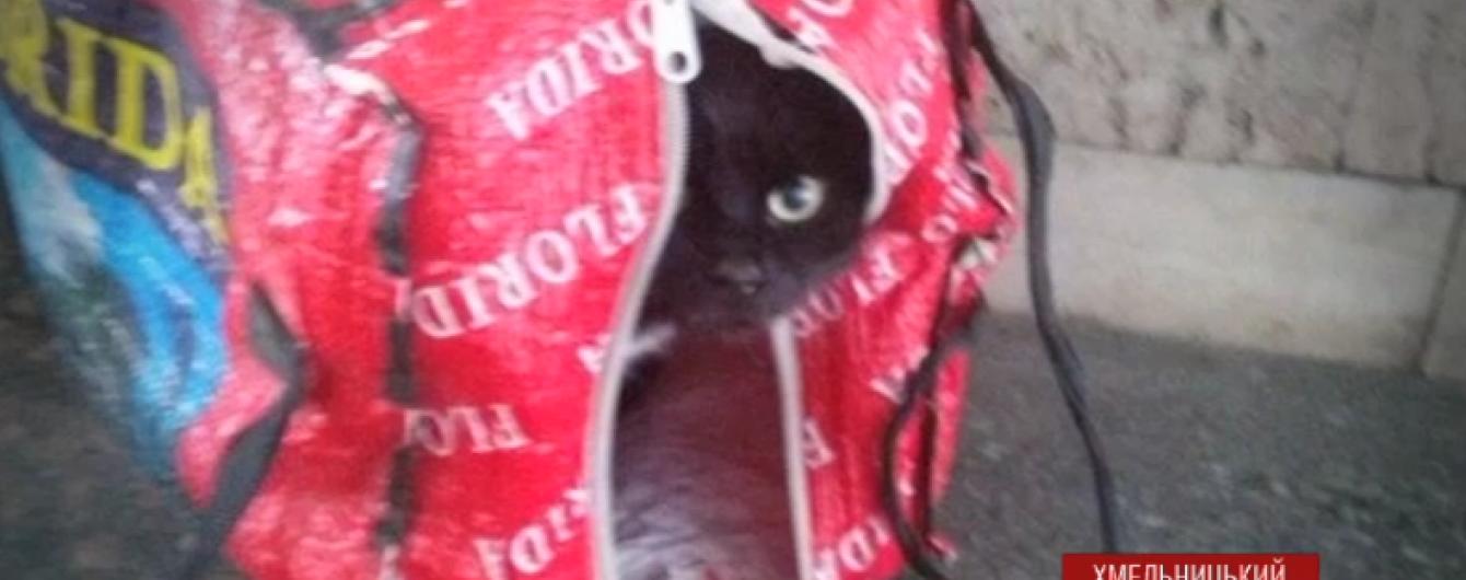 У Хмельницькому чорного кота в сумці прийняли за вибухівку