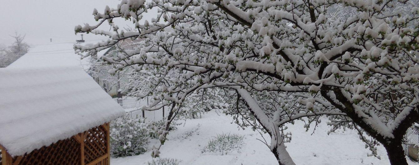 Холодна весна. В Україні дощитиме та сніжитиме