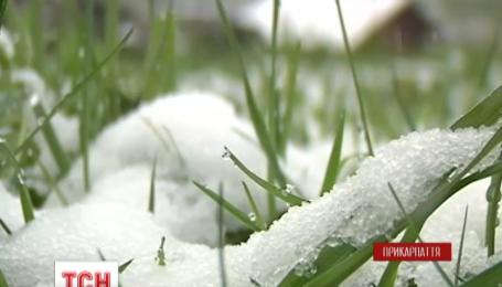 На западе Украины выпал снег