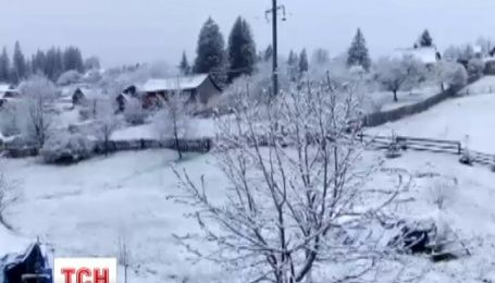 На Прикарпатье ночью выпал лапатый снег