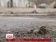 На Донбасі бойовики останню добу активно обстрілюють позиції українських збройних сил