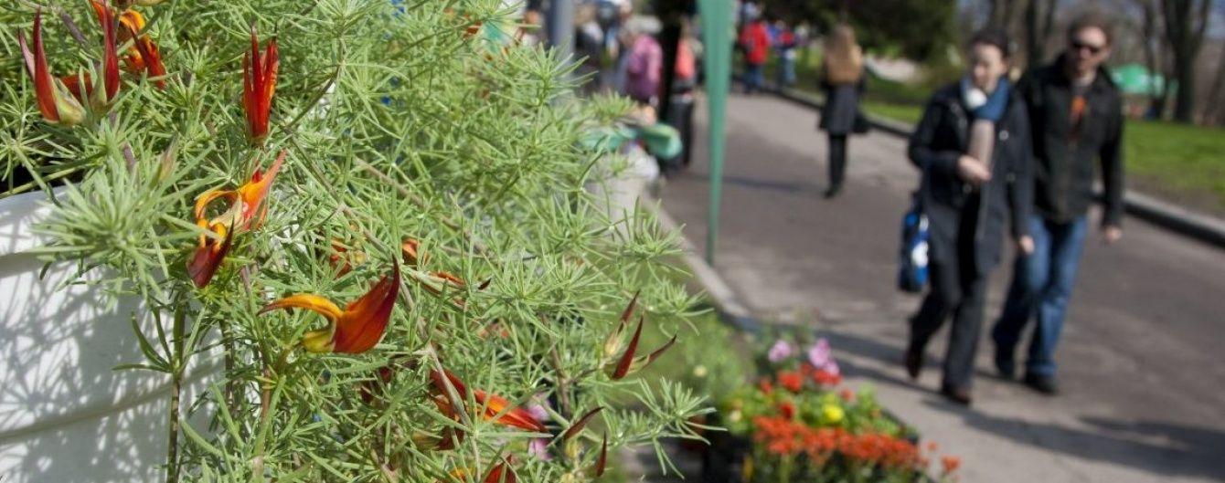 Синоптики обіцяють українцям суху і теплу погоду